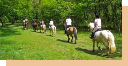a group of people riding horses in birr offally