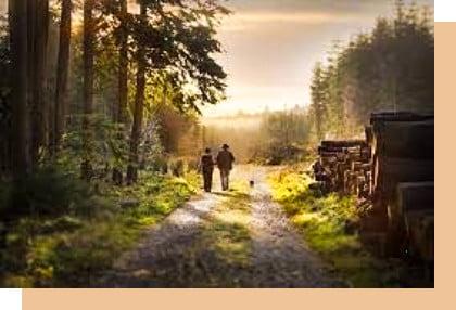 two people walking in slieve bloom forest